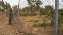 formation_potager_2